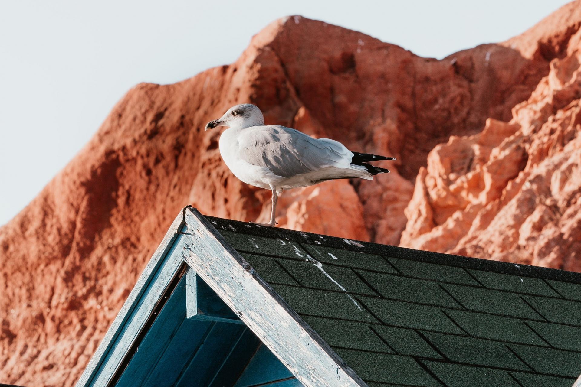 AlgarveCool_Blog_O que não pode perder este Verão no Algarve